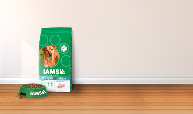 Iams® ProActive Health™ Adult Large Breed
